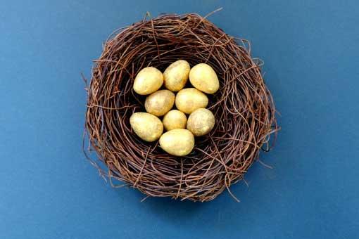 image of golden eggs in nest