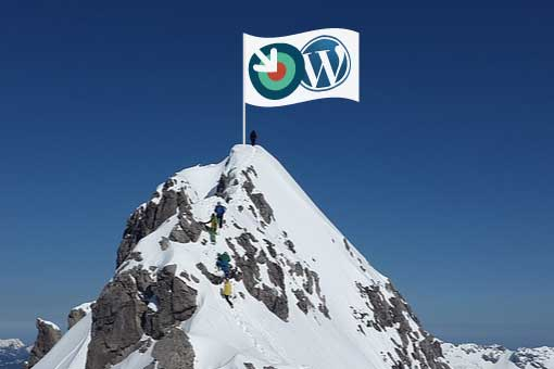 AIM and WordPress flags atop mountain